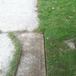 Hand Edged Lawn