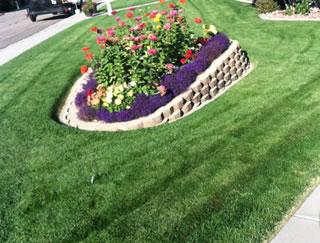 Lawn Care Services Enoch Utah