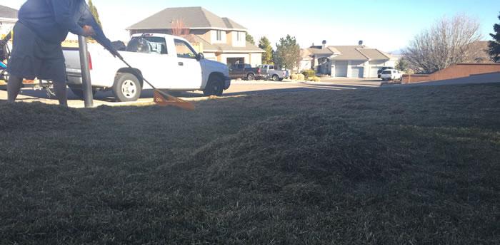 Lawn Dethatching Cedar City Utah