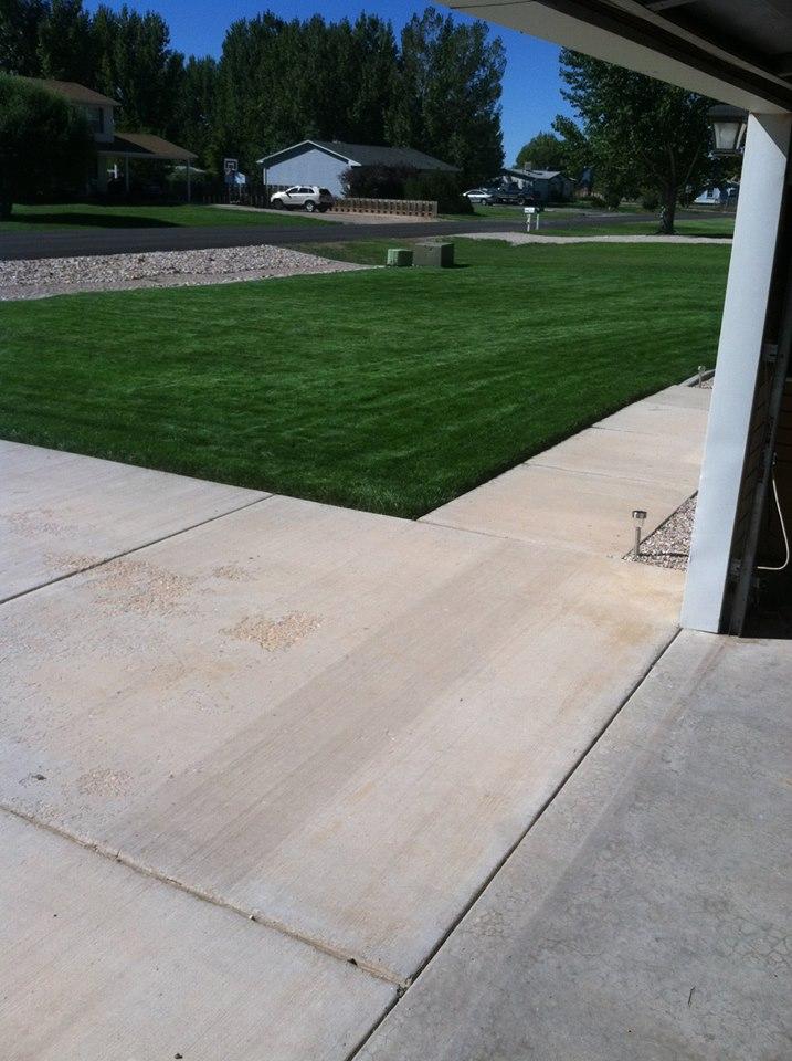 nice lawn
