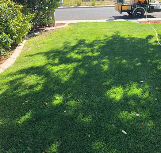 Lawn Care And Lawn Maintenance In Cedar City And Enoch Utah